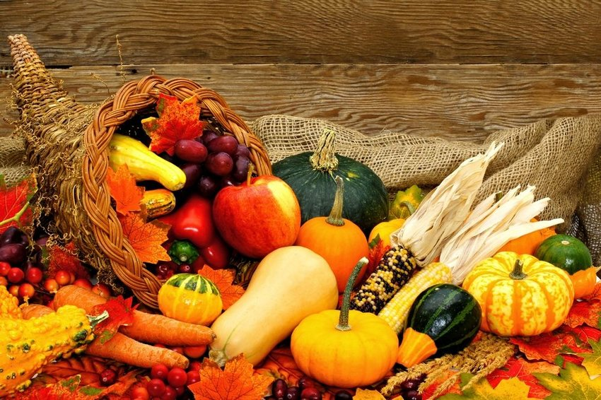What do these Thanksgiving terms really mean?