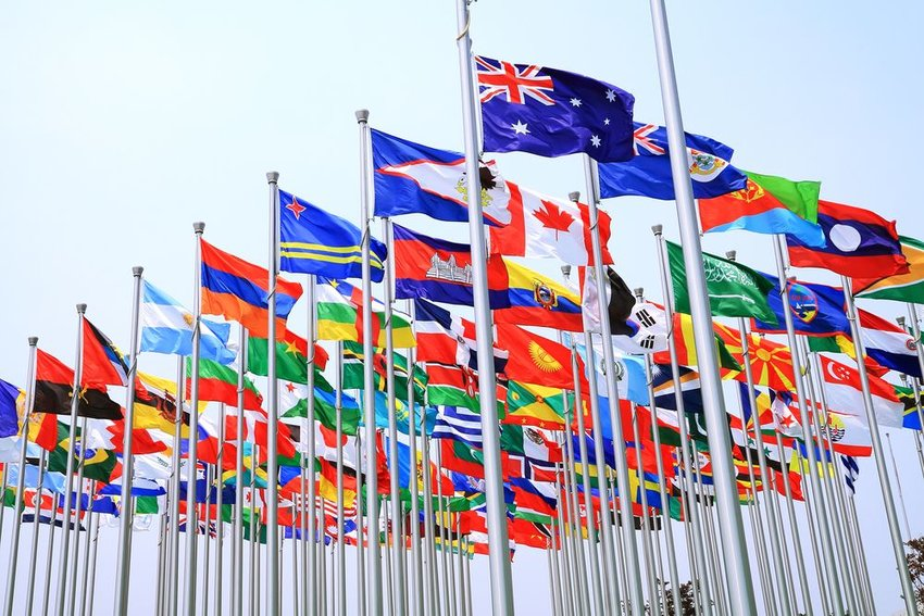 What's the difference between a national language and an official language?