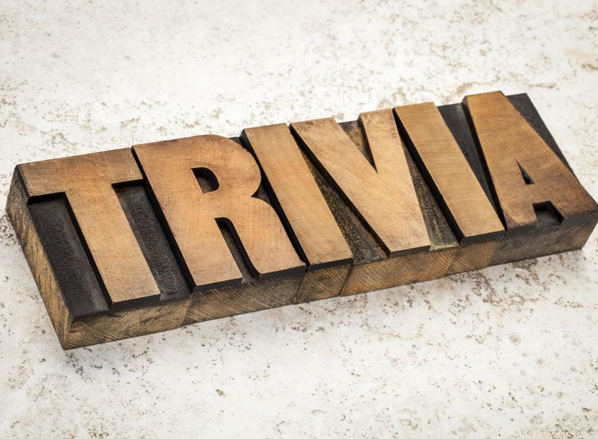 Show off your knowledge with this word-related trivia